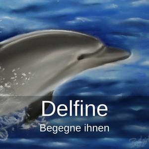 Delfin der aus dem Wasser kommt, Begegne den Delfinen